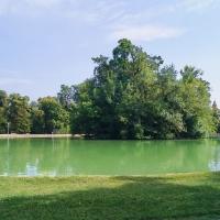 2018 parma 193 - Stefano Sansavini - Parma (PR)