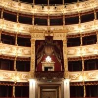 Teatro Regio IMG 4958 - Giulschel - Parma (PR)
