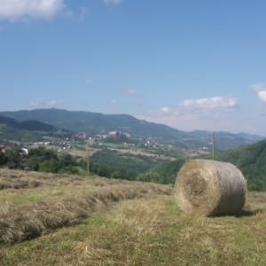 Fortezza di Bardi - ballone di fieno foto di: |Manuela Strinati| - Dipendente