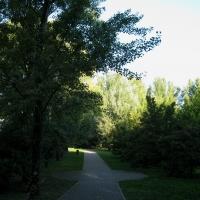 Parco del Loto, un percorso - Sofiadiviola - Lugo (RA)