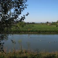 Parco Golfera, veduta 1 - Sofiadiviola - Lugo (RA)
