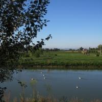 Parco Golfera, veduta 3 - Sofiadiviola - Lugo (RA)