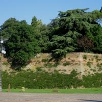 Giardino pensile della Rocca estense - Sofiadiviola - Lugo (RA)