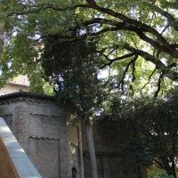 Campana nel giardino di Dante - Alessandro Gennari - Ravenna (RA)