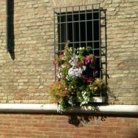 Via Guido da Polenta - Dettaglio - Bebetta25 - Ravenna (RA)