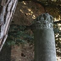 Zona Dantesca, colonna - Stefano pezzi - Ravenna (RA)