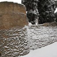 Nevicata - Vincenzo Zaccaria - Castel Bolognese (RA)