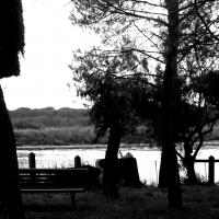 Panchina solitaria nell'attesa di Garibaldi ed Anita - Federfabbri - Ravenna (RA)