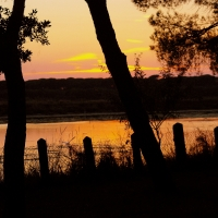 Al calar della sera tra le zanzare - Federfabbri - Ravenna (RA)