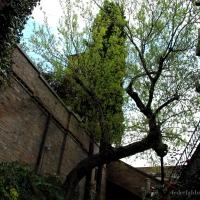 Uno scorcio dei Gairdini - Federfabbri - Ravenna (RA)
