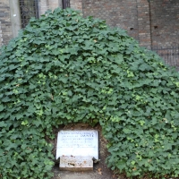 Tomba dante - 0mente0 - Ravenna (RA)