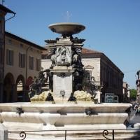 Foto Faenza aprile 2016 081 - Rosapicci - Faenza (RA)