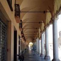 Foto Faenza aprile 2016 071 - Rosapicci - Faenza (RA)