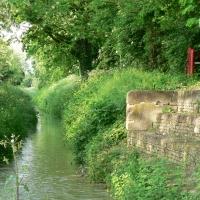 Canale dei mulini dal ponte delle Lavandaie - Carla Guerra - Lugo (RA)