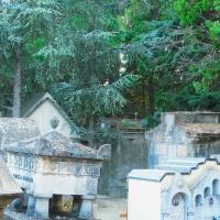 Cimitero Monumentale di Massa Lombarda 02 - Federica ricci - Massa Lombarda (RA)