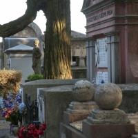 Cimitero particolare - Roberto Marconi 62 - Massa Lombarda (RA)