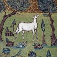Sant'apollinare in classe, mosaici del catino, trasfigurazione simbolica, VI secolo, 08,2 agnello come apostolo - Sailko - Ravenna (RA)