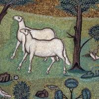 Sant'apollinare in classe, mosaici del catino, trasfigurazione simbolica, VI secolo, 12 agnelli come apostoli - Sailko - Ravenna (RA)