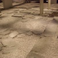 Domus dei Tappeti di Pietra-Ambiente 2 - Clawsb - Ravenna (RA)