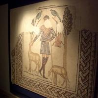 Domus dei Tappeti di Pietra-Mosaico del Buon Pastore - Clawsb - Ravenna (RA)
