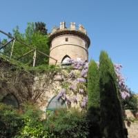 Scorcio Giardino Palazzo Provincia - Chiara Dobro - Ravenna (RA)