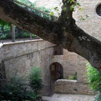 Giardini pensili Palazzo della Provincia 3 - Clawsb - Ravenna (RA)