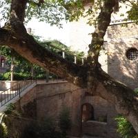 Giardini Pensili, veduta generale - Cristina Cumbo - Ravenna (RA)