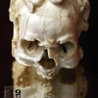 Francia o fiandre, memento mori a forma di teschio, xvi secolo - Sailko - Ravenna (RA)