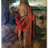 Bartolomeo montagna, san giovanni battista - Sailko - Ravenna (RA)