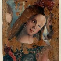 Francesco zaganelli (francesco da cotignola), testa d'angelo, 1520-30 ca - Sailko - Ravenna (RA)
