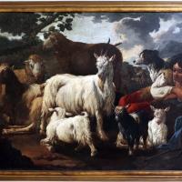 Micco brandi, pastore con gregge di pecore e capre, 1705-30 ca - Sailko - Ravenna (RA)
