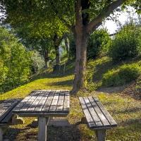 Wood table-2 - Massimo Saviotti - Casola Valsenio (RA)