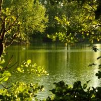 Parco S.PERTINI Cotignola il lago - Sancio1979 - Cotignola (RA)