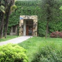 Verde e prospettiva - Persepolismo - Faenza (RA)