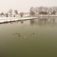 Vista con la neve - Gianni Buscaroli 1 - Lugo (RA)