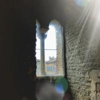20170923 114803 palazzo Teodorico Ravenna - Mara panunti - Ravenna (RA)