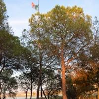 Capanno Garibladi-bandiera italiana - Emilia giord - Ravenna (RA)