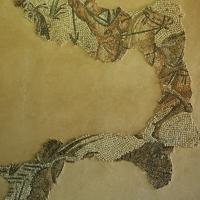 Palazzo di Teodorico - Mosaico piano superiore 7 - Walter manni - Ravenna (RA)
