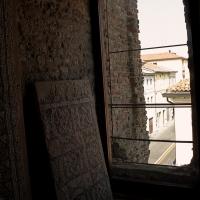 Palazzo di Teodorico - Mosaico piano superiore 6 - Walter manni - Ravenna (RA)