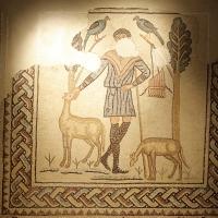 Domus dei Tappeti di pietra -pastore - Walter manni - Ravenna (RA)