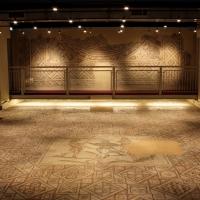 Domus dei Tappeti di pietra - panoramica 3 - Walter manni - Ravenna (RA)