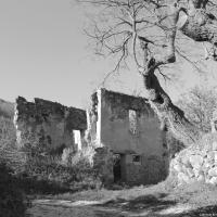 Antico borgo dei Crivellari - Marinaloconteciaranfi - Riolo Terme (RA)