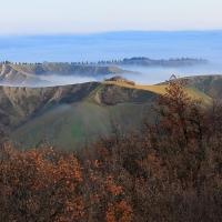 Casecchie - Marinaloconteciaranfi - Riolo Terme (RA)