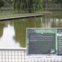 Parco Golfera - Stefano.Ronchi.it - Lugo (RA)