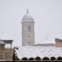 Basilica di San Vitale 3 foto di C.Grassadonia - Chiara.Ravenna - Ravenna (RA)