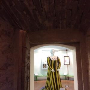 Rocca Sforzesca - Bagnara - Sala I signori della rocca foto di: Bagnara di Romagna - Comune