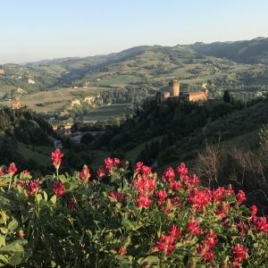 Rocca dei Veneziani - Rocca Panorama foto di: |Laghi Daniela| - Archivio Comune di Brisighella
