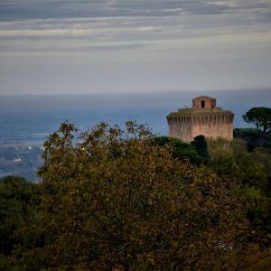 Torre di Oriolo - panorama foto di: |privato| - Archivio fotografico del castello