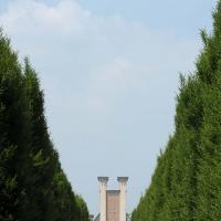 Cimitero Monumentale-viale - Matteo Colla - Poviglio (RE)