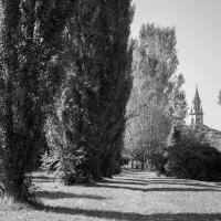 Chiesa di San Maurizio - Alessandro Azzolini - Reggio nell'Emilia (RE)